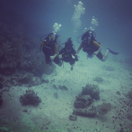 Bahia Divers: Awesome time with my family