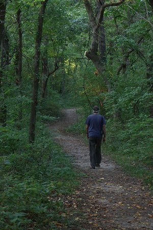 Miami, MO: walk along Pinnacles ridge trail