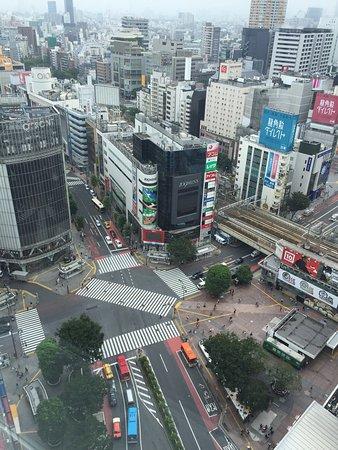 Shibuya Excel Hotel Tokyu : photo3.jpg