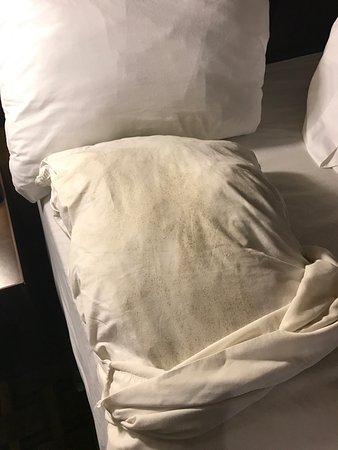 Quality Inn & Suites: photo3.jpg