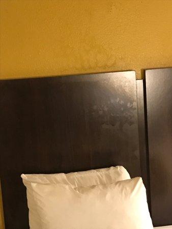 Quality Inn & Suites: photo8.jpg