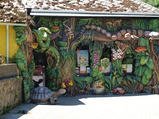 Reptilien Zoo Forchtenstein