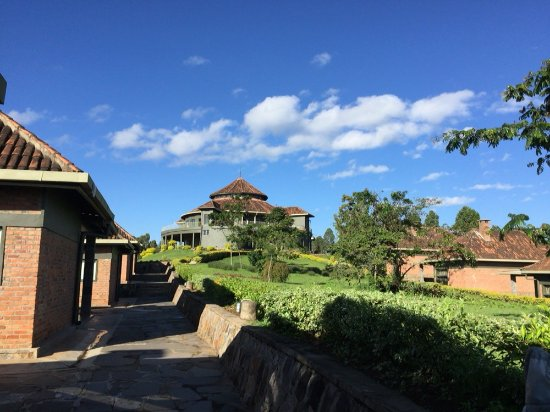 Gisakura, Rwanda: From the cabins, looking up at the back of the main building