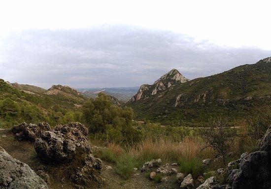 Gandia, إسبانيا: Cueva del Parpallo