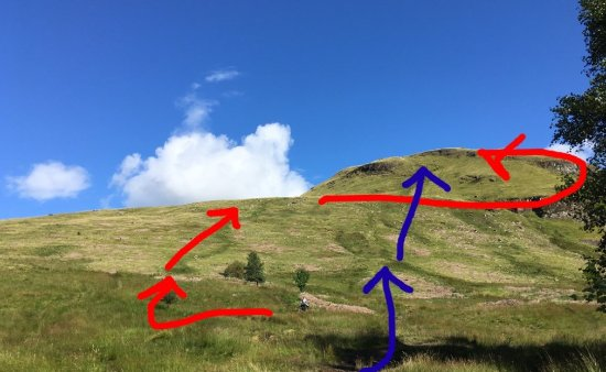 Killearn, UK: Two paths up Dumgoyne (red easier, blue straight up)