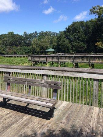 Larry W. Abernathy Waterfront Park: photo1.jpg