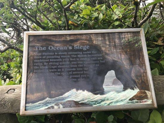 Clallam Bay, WA: Cape Flattery