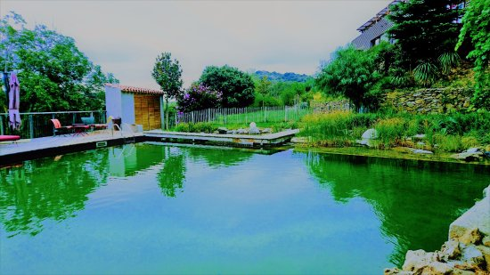 Eco Swimming Pool - Picture of Riberach Hotel Cave ...