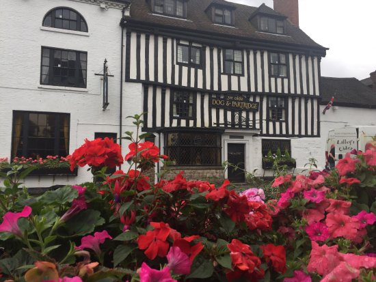 Tutbury, UK: Wonderful ambience ...