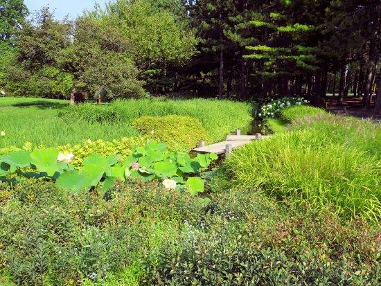 Montreal, Canadá: Le jardin japonais