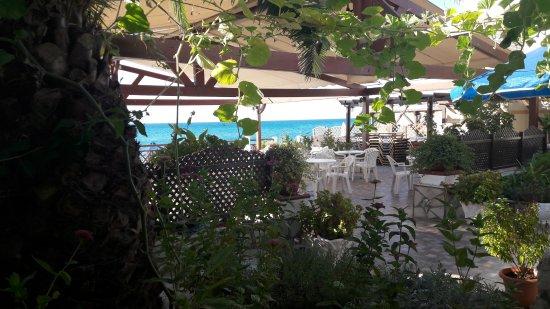 El Coral Hotel: Piano terra con vista