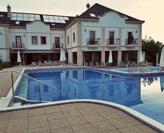 Hotel Villa Volgy: Pool