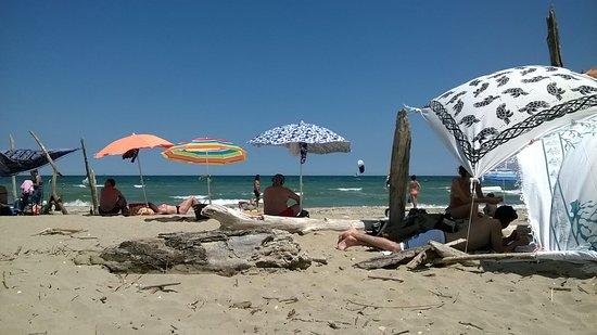 Лидо-ди-Классе, Италия: Tronchi ammarati, ombrelloni abbastanza distanti, acqua limpida.