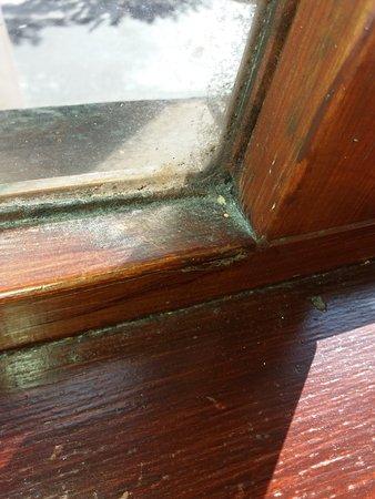 Fowley Cross, UK: The dirty hotel room windows