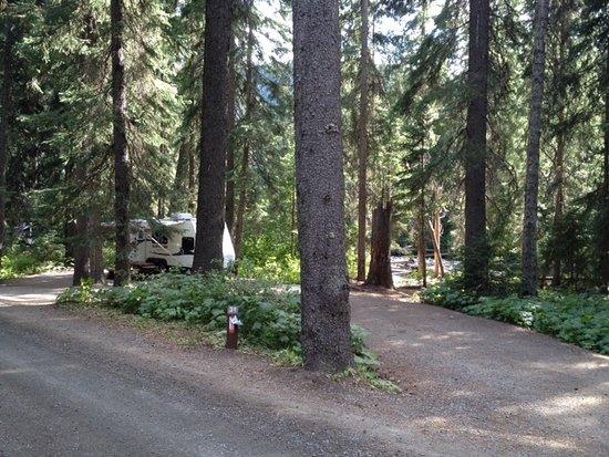Manning Park, Kanada: Coldspring Campsite #31
