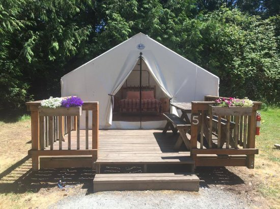 Eastsound, WA: Tent Cabin 5