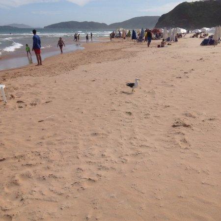 Buzios, RJ: Praia