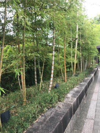 Hyatt Regency Kyoto: photo1.jpg