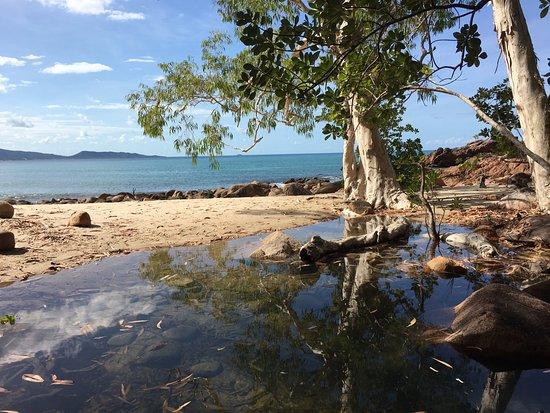 Hinchinbrook Island: gorgeous beaches