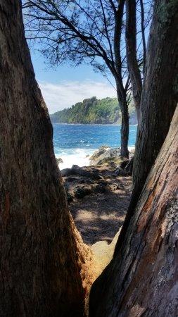 Laupahoehoe, Гавайи: View