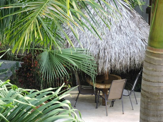 Fuego Lodge: Me encantó. El lugar super aseado. Bárbara super  amable cerca de la playa. El lugar perfecto pa