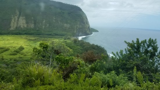 Waipio Valley Lookout: View from the top