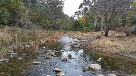 Tawonga, Αυστραλία: Stream crossing. Photo taken on horseback.