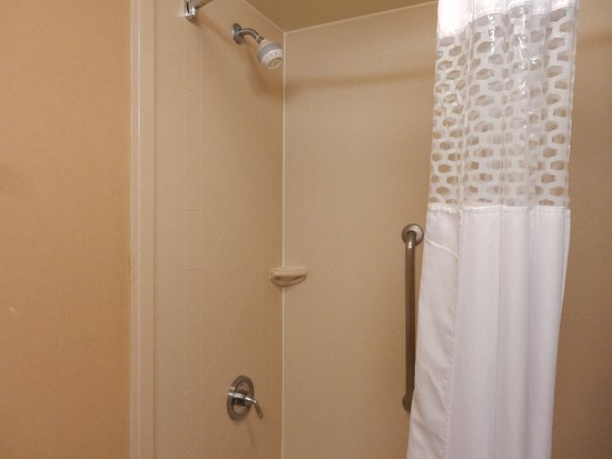 Hampton Inn & Suites Fredericksburg: shower