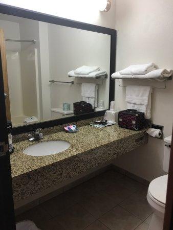 Best Western Of Huron: Bathroom, nice packets of coffee, good amenities, mini fridge