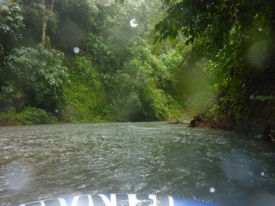Drake Bay, Costa Rica: floating on the river