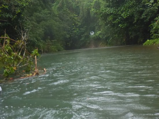 Drake Bay, Kosta Rika: wonderful river
