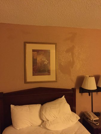 Quality Inn Shenandoah Valley: photo2.jpg