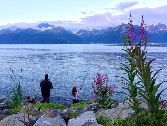 Alaska Paddle Inn: Fishing from shore