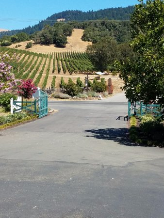 Goldeneye Winery: View from the front gate