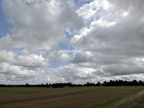 Thamesford, Canadá: Fields near Just For You