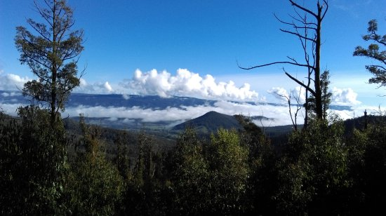 Marysville, Australia: Looking Back to Buxton
