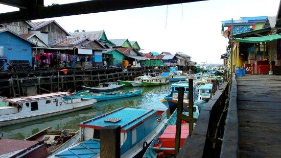 Berau, Indonesia: Harbour Talisayan