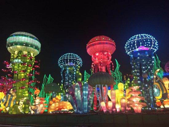 Dubai Garden Glow: Garden Glow