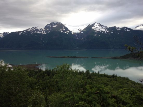 Chilkat State Park: view from 300' elevation
