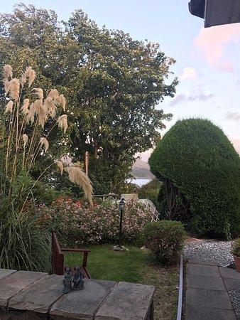 Drumorell: garden