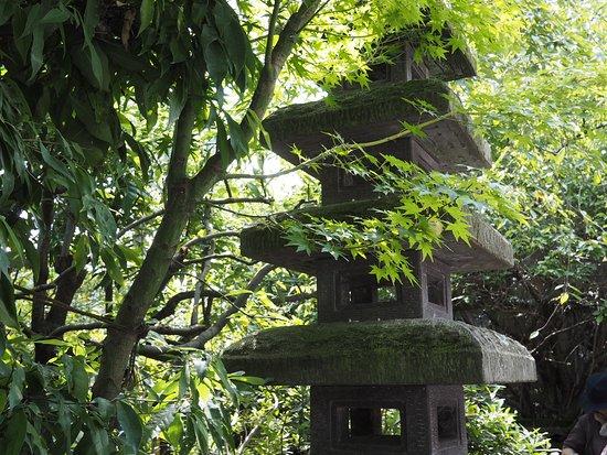 Minano-machi, Japan: OI000041_large.jpg
