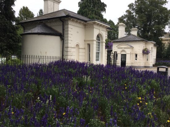 Royal pump rooms and surrounding park