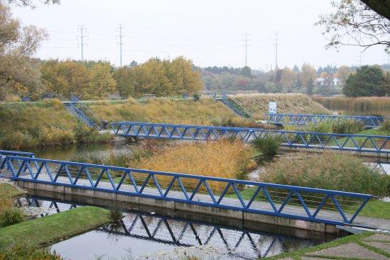 Le Parc De La Plage Bleue: pont sur le plan d'eau