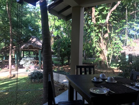 Pelwehera Village Resort : Our room and the view from the dining area