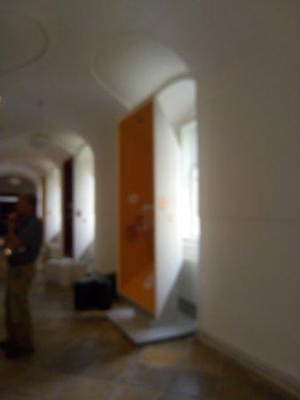 Mendelovo muzeum: P_20170820_111634_large.jpg