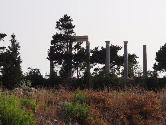 Château de Byblos : Voie romaine