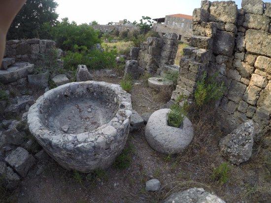 Château de Byblos : Pressoirs