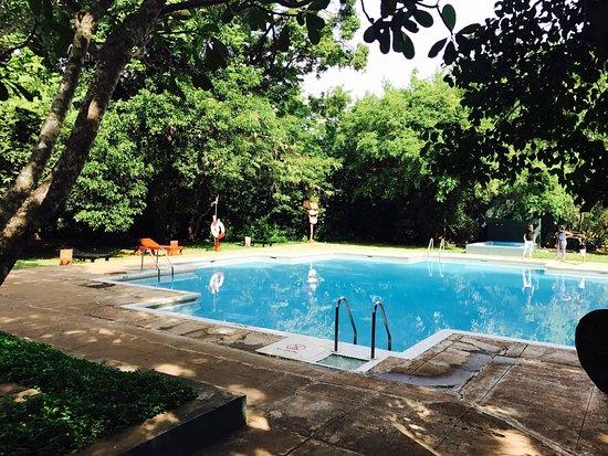 Sigiriya Village Hotel: Trashy, old worn out and smelly