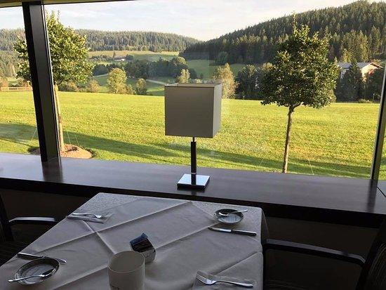 Parkhotel Flora : Schöne Aussicht beim Frühstück