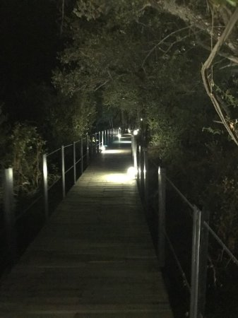 The Outpost: The walkway to the rooms is lit at night